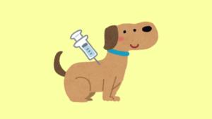 ワクチンを受ける犬のイラスト
