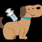 予防注射をしている犬のイラスト