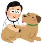 獣医に聴診器を当てられる犬のイラスト