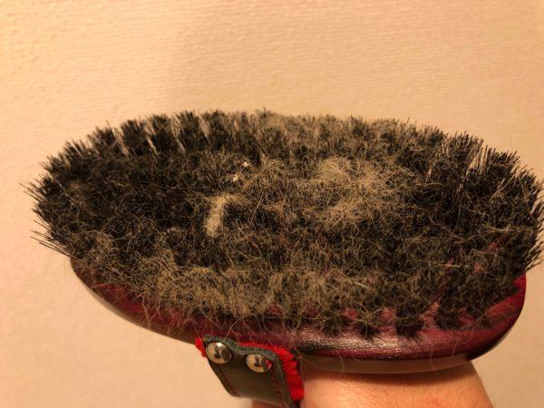 抜け毛がたくさんついた獣毛ブラシ