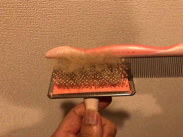 スリッカーブラシの抜け毛をコームで取っているところ