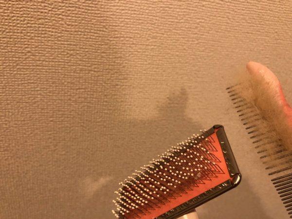 スリッカーブラシの抜け毛がコームできれいに取れたところ