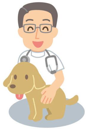 獣医のイラスト