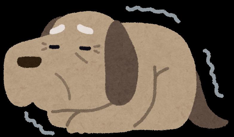 身体が弱ったシニア犬のイラスト