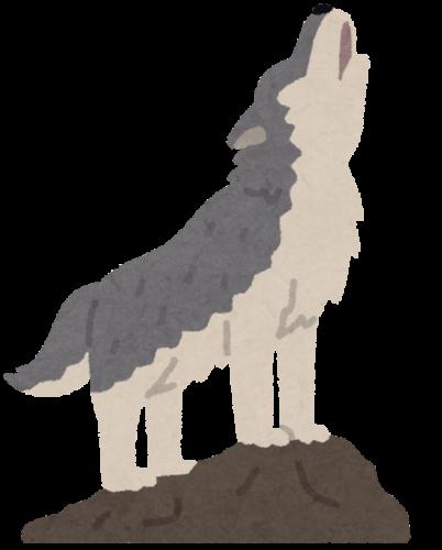 遠吠えするオオカミのイラスト