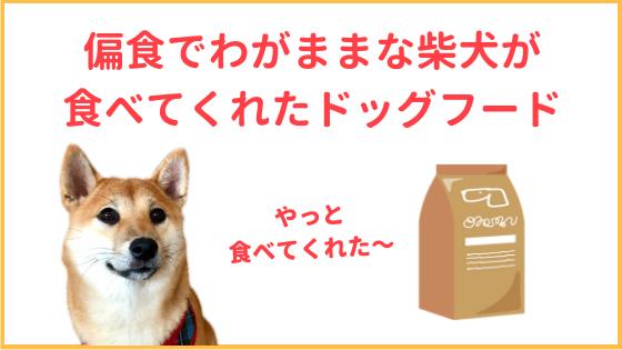 偏食の柴犬のアイキャッチ画像