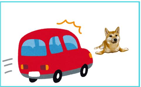 車に惹かれそうな犬のイラスト