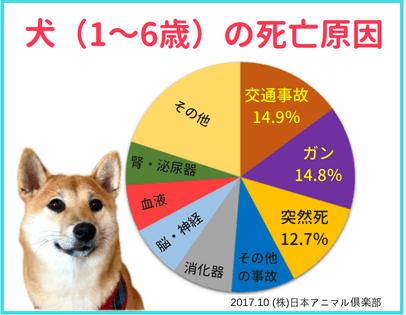犬の成年期(1~6歳)での死亡原因の円グラフ