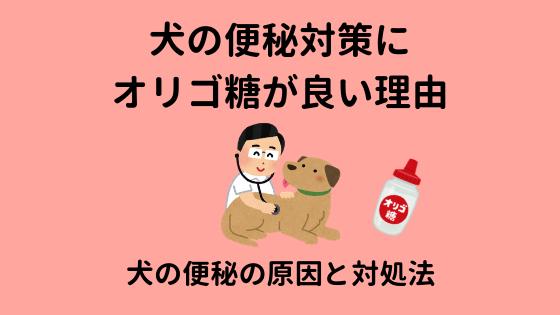 犬の便秘にオリゴ糖が良い理由のアイキャッチ