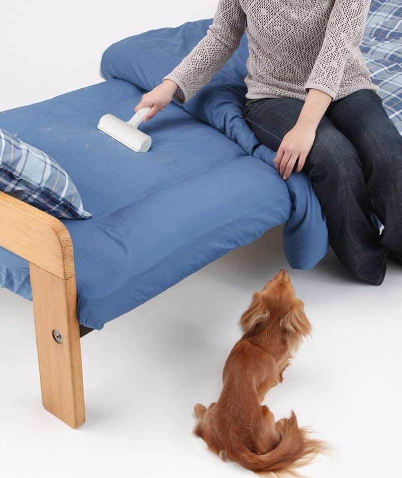 パクパクローラーでソファーについた犬の毛を取っているところ