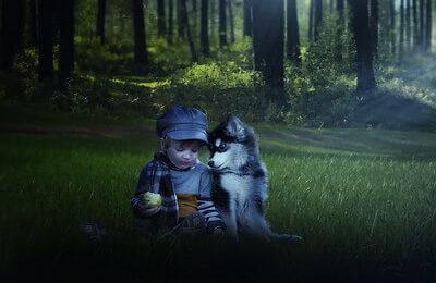 森の中で絵本をみる少年と犬