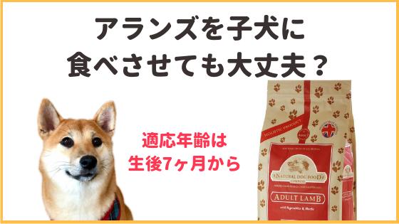 アランズナチュラルドッグフードは子犬に使っていいのアイキャッチ画像