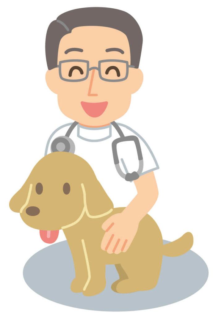 獣医と犬のイラスト
