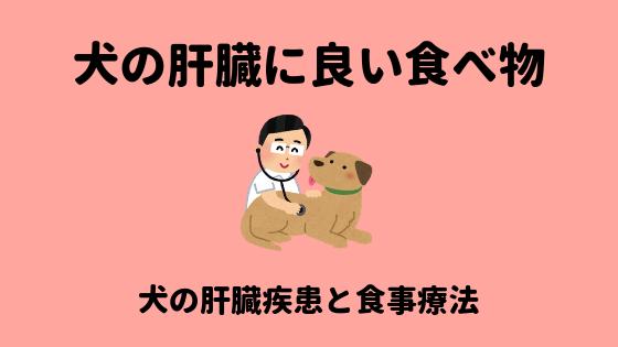 犬の肝臓に良い食べ物のアイキャッチ画像