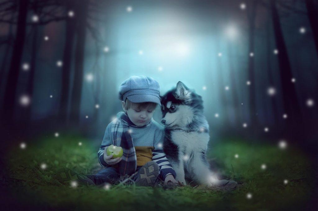 森の中の少年と犬