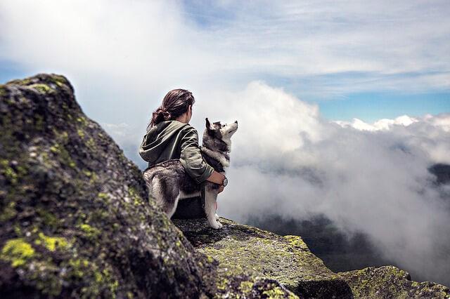 崖の上にいる犬と飼い主