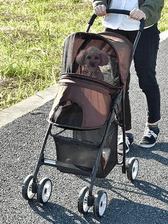 Folding pet cart MINI 折りたたみペットカート