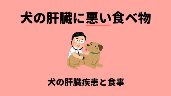 犬の肝臓に悪い食べ物のアイキャッチ画像