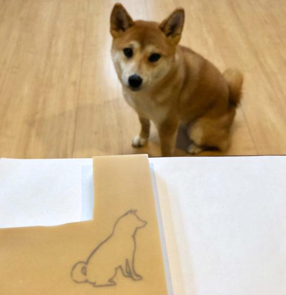 犬のシルエットを消しゴムハンコの板に転写しているところ