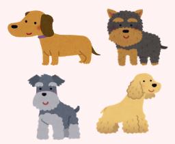 膵炎を発症しやすい犬種