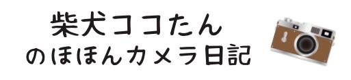柴犬ココたん「のほほんカメラ日記」